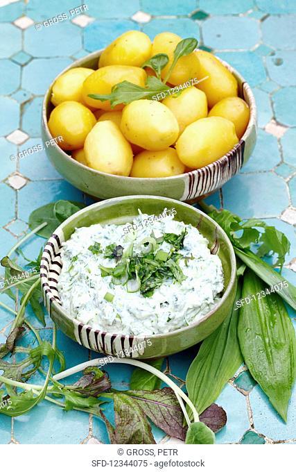 Wild herb quark with peeled potatoes