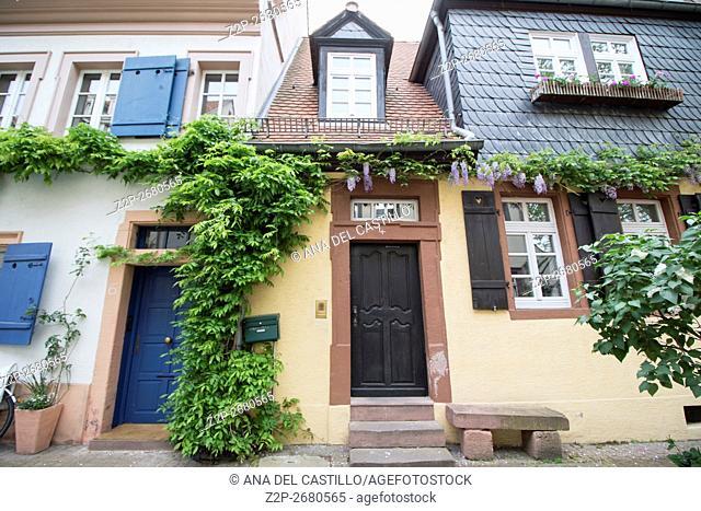 Beautiful cityscape in Heidelberg, Germany