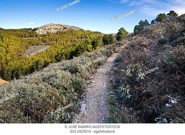 Hierro gorge track in the Sierra Norte. Patones. Madrid. Spain. Europe
