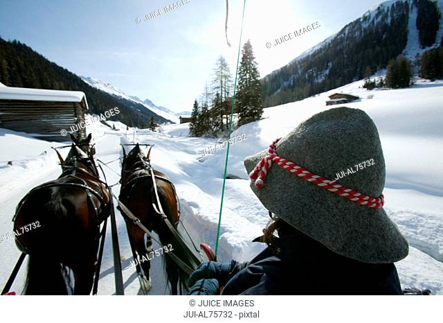 View of a person in a horse drawn carriage traveling on snow covered ground, Dischmatal, Davos, Graubuenden, Switzerland