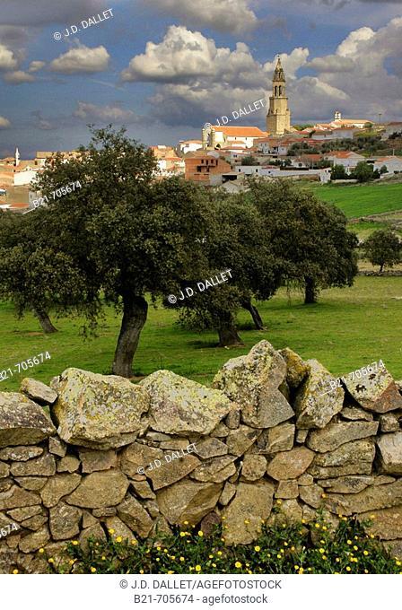 Spain-Andalusia-Cordoba- village of Los Pedroches