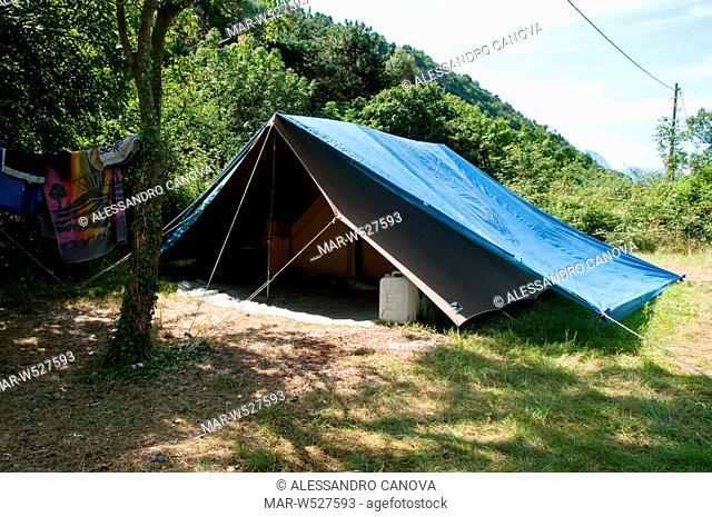 tenda da campo, campo scout