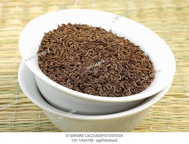 CARAWAY SEEDS carum carvi IN A BOWL