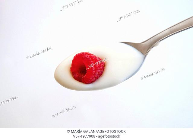 Raspberry with cream on a spoon. Close view