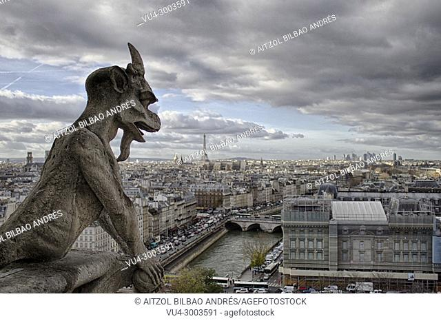Gargoyle of Notre dame cathedral, a typical view from the higher part of the cathedral