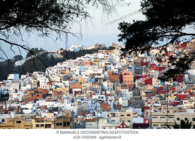 Town of Tangier from opposite hill through trees, Morocco
