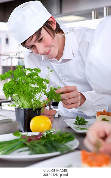 Trainee chef working with parsley in commercial kitchen