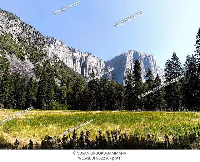 USA, California, Yosemite National Park, View of El Capitan