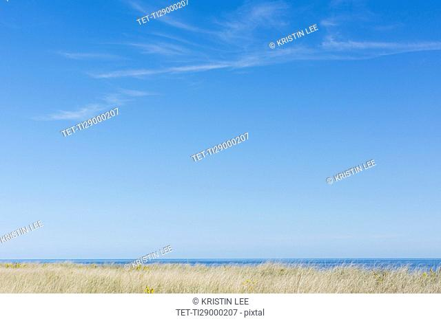 Horizon over sea and clear sky