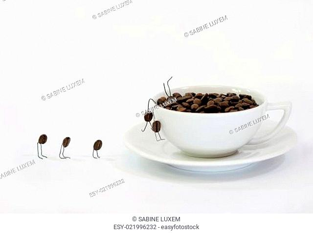 coffee beans on work