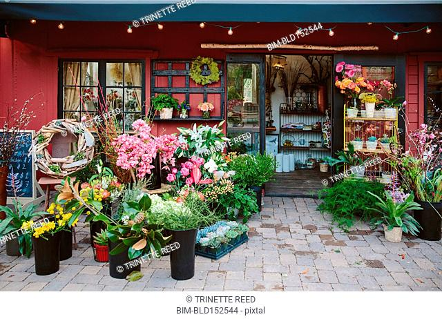 Fresh flowers outside florist shop