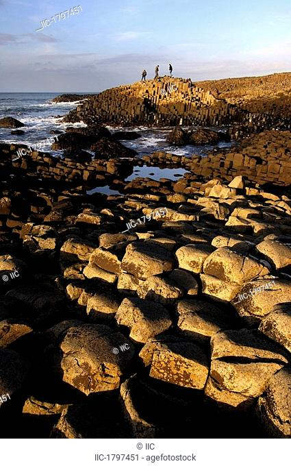 Rocks At The Coast, Giant's Causeway, County Antrim, Northern Ireland