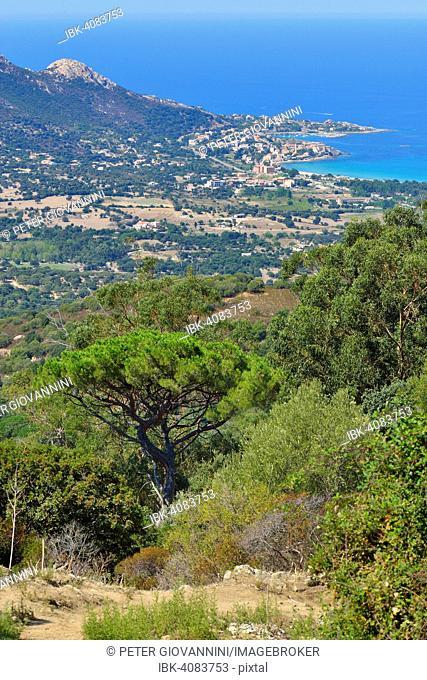 The Bay of Calvi, Balagne, Haute-Corse, Corsica, France