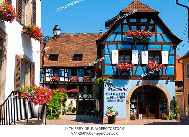 France, Haut Rhin (68), Eguisheim village (elected most beautiful french village), old domanial court Kybourg-Brunswick, winery