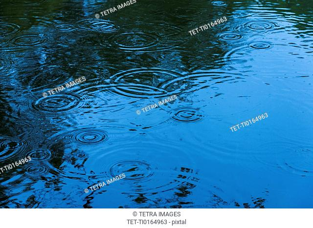 Droplets splashing on lake surface