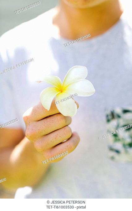 Young man with plumeria flower in hand