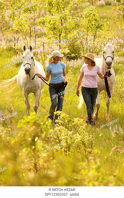 Two Women Leading Horses In Lupine Field