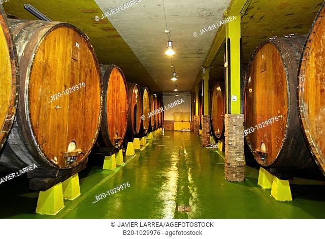 'Kupela' barrels, Petritegi typical cider house ('sagardotegi'), Astigarraga, Gipuzkoa, Euskadi, Spain