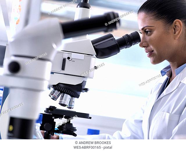 Biotechnology Research, female scientist examining a specimen under a microscope in the laboratory