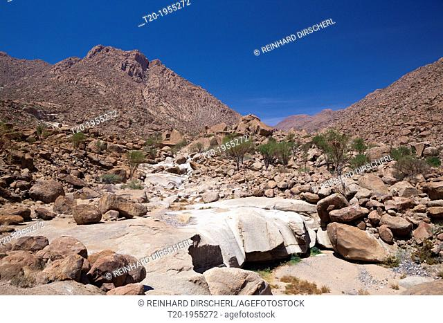Impressions of Tsisab Ravine Valley, Brandberg, Erongo, Namibia