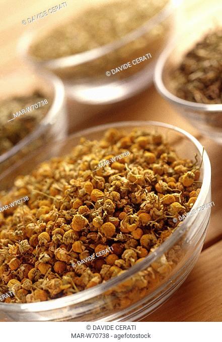 tisane, aromatic herbs