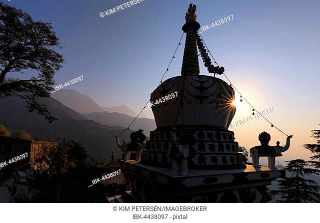 Sunrise at Stupa in Lhagyal Ri, in the back Himalaya mountains, McLeod Ganj, Dharamsala, Himachal Pradesh, India