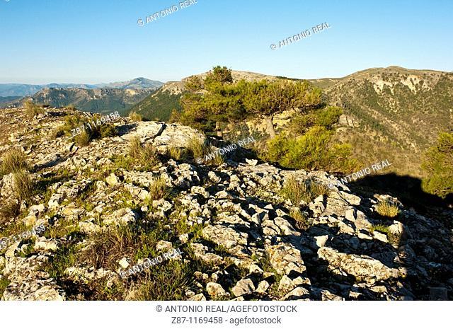 Calares del Mundo y de la Sima Natural Park, Sierra del Segura, Riopar, Albacete province, Castilla-La Mancha, Spain