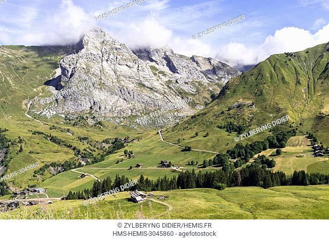 Mountain farm on steep slope, Stock Photo, Picture And