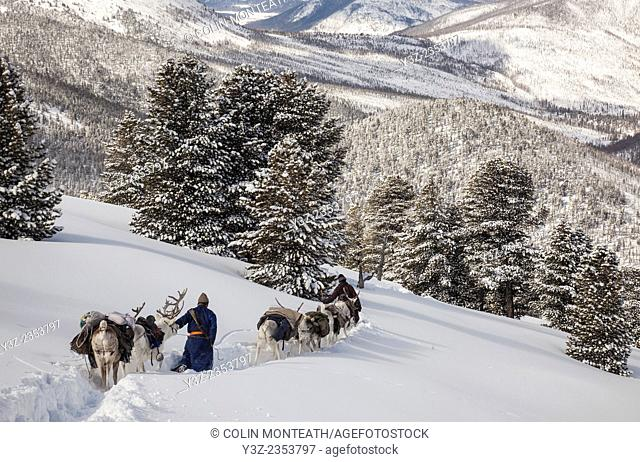 Tsataan reindeer herders, winter in Taiga forest, Hunkher mountains, northern Mongolia