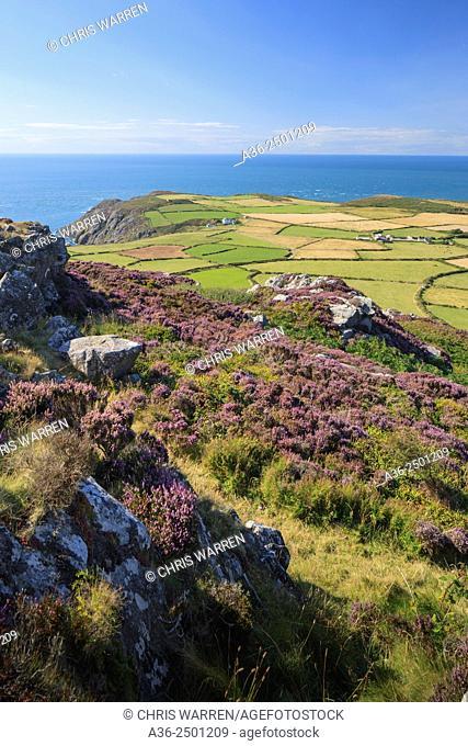 Strumble Head Fishguard Pembrokeshire Wales