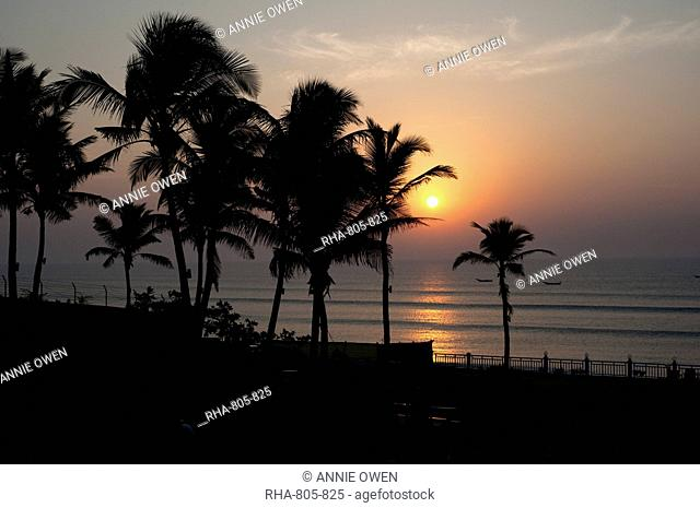 Sun rising over the waters of the Bay of Bengal, through coconut palm trees, Gopalpur on Sea, Orissa (Odisha), India, Asia