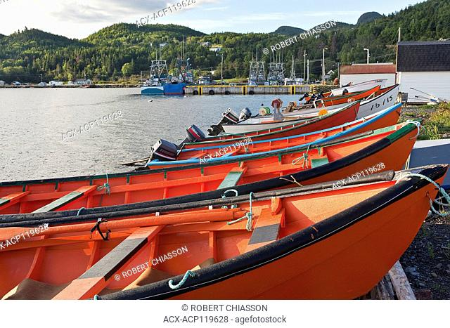 Row of locally built Lark Harbour dories drawn up on a slipway in Frenchman's Cove (Bay of Islands), Newfoundland, Canada
