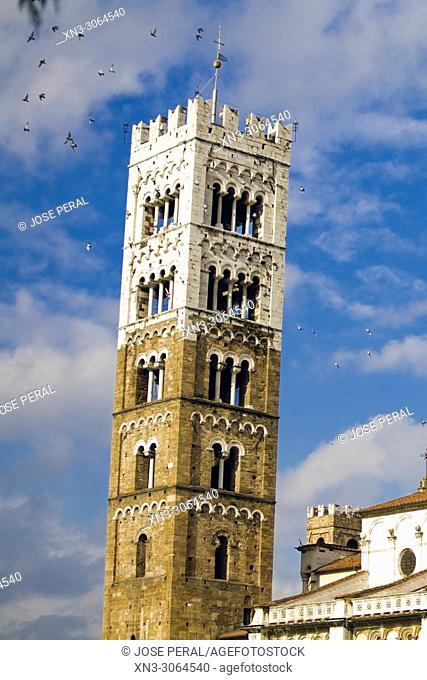 Bell Tower, Duomo di San Martino, The Cathedral of St Martin, Lucca, Tuscany, Italy, Europe