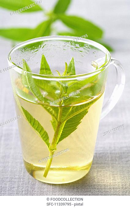 Verbena tea in a glass cup