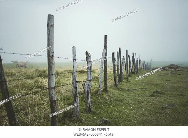 Spain, Ortigueira, pasture with fence on a foggy day