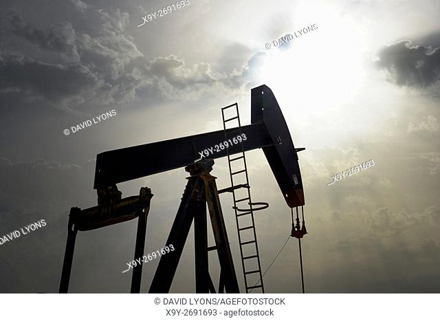 Pumpjack aka oil horse, nodding donkey, oil jack, beam pump raises crude oil in the Bahrain desert at Sakhir on the Persian Gulf