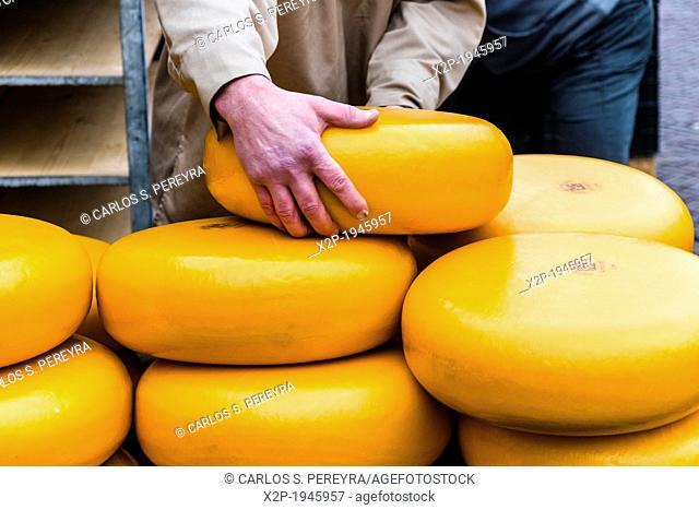 Cheese market, De Waag, Alkmaar, Netherlands, Europe