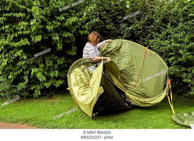 A woman putting up a green pop up tent in a sheltered spot by a tall hedge