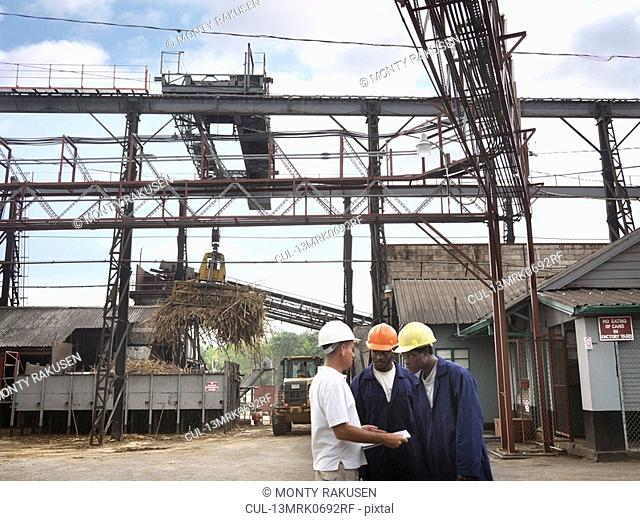 Sugar Cane Workers At Processing Plant