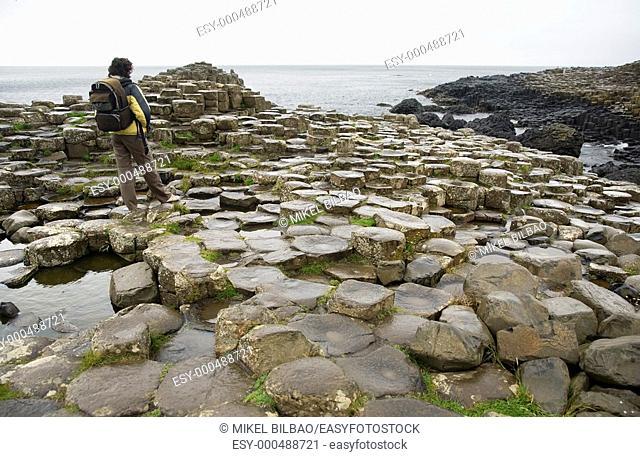 Giant's Causeway. Moyle, County Antrim, Northern Ireland, United Kingdom, Europe