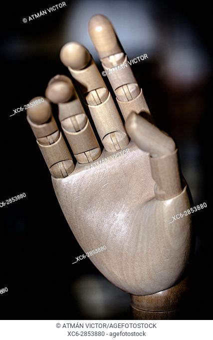 wooden articulated right hand
