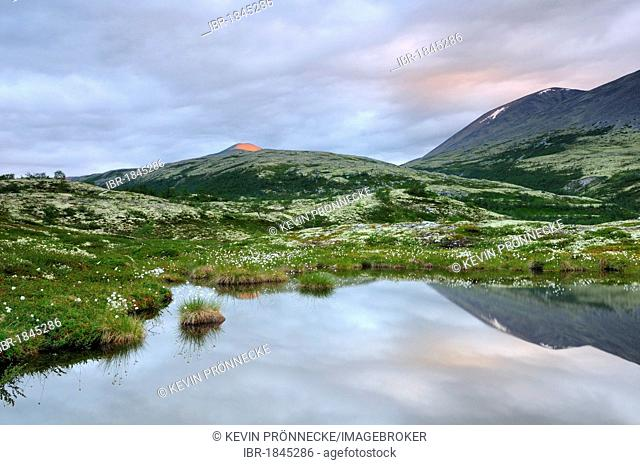 Mountain lake, Fjell landscape near Bjørnhollia in Rondane National Park, Norway, Scandinavia, Europe