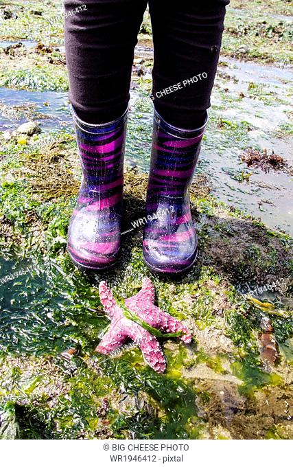 Child's feet in boots standing by a sea star