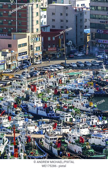 South Korea, Yeongnam Region, Busan, Port of Busan with view of Harbour with fishing boats at Jagalchi fish market