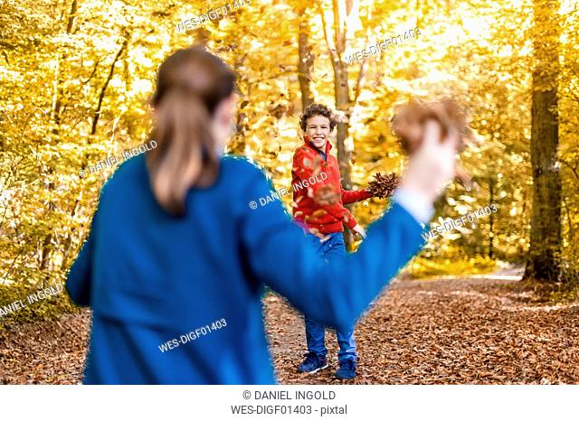 Mother and son playfighting with leaves in the autumnal forest