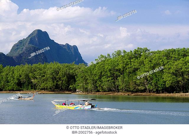 Excursion boat on a river passing mangroves and limestone cliffs, Phang Nga, Thailand, Southeast Asia