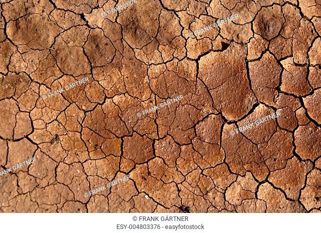 Dried soil under the Sun