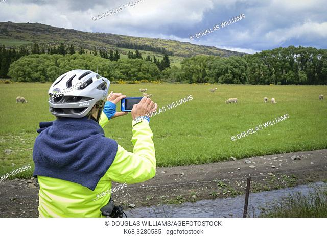 A woman takes a photo on the Central Otago Rail Trail, South Island, New Zealand