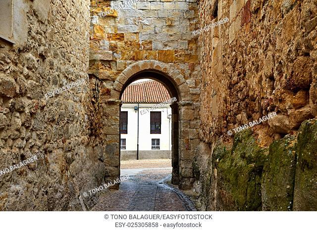 Zamora door of Dona Urraca in Spain by the via de la Plata way to Santiago