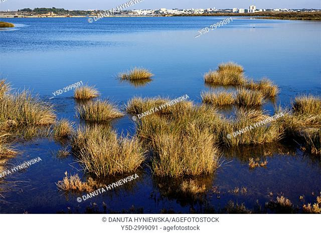 Estuary of Alvor river - Ria de Alvor and Odiaxere river, staging post for thousands of migrating birds, estuarine ecosystem is rich in numerous animals